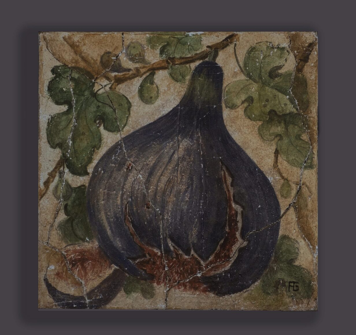 Oil of a Fig