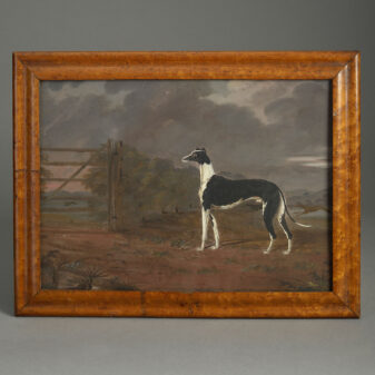 Oil of a Greyhound