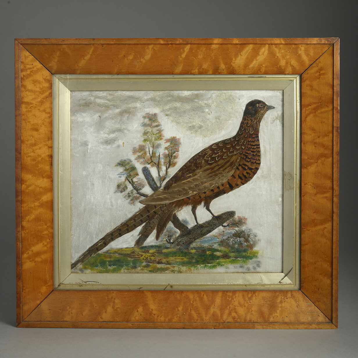 Pheasant Feather Picture